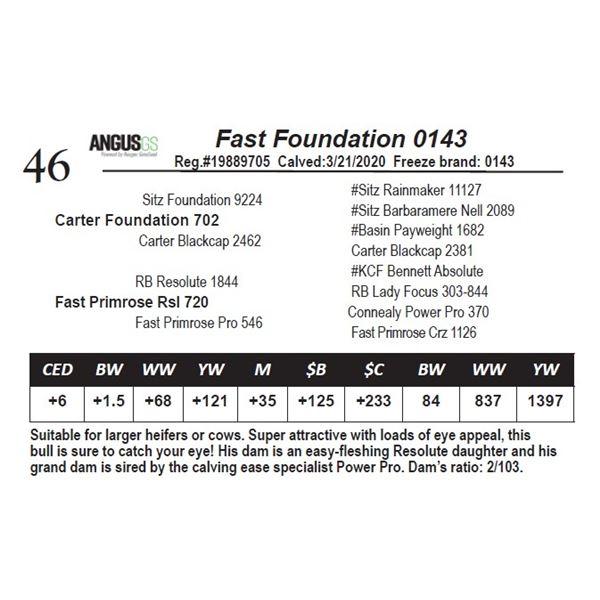 Fast Foundation 0143
