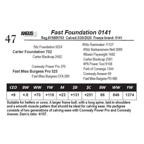Fast Foundation 0141
