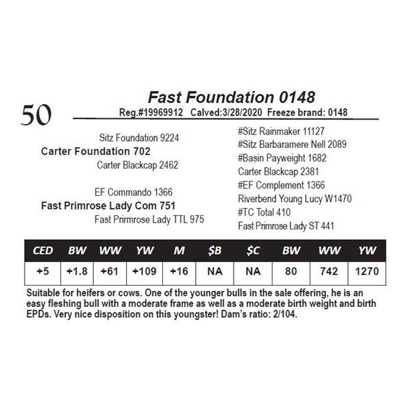 Fast Foundation 0148
