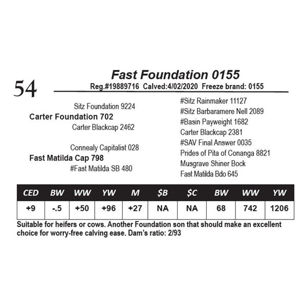 Fast Foundation 0155