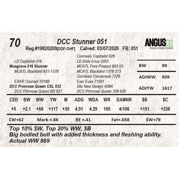 DCC Stunner 051