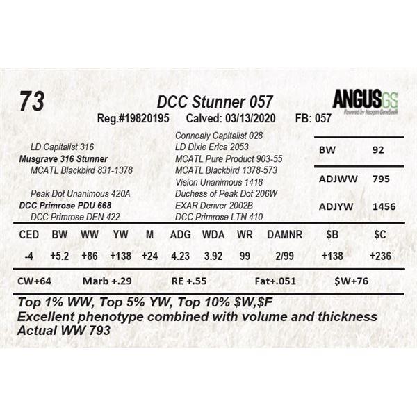 DCC Stunner 057