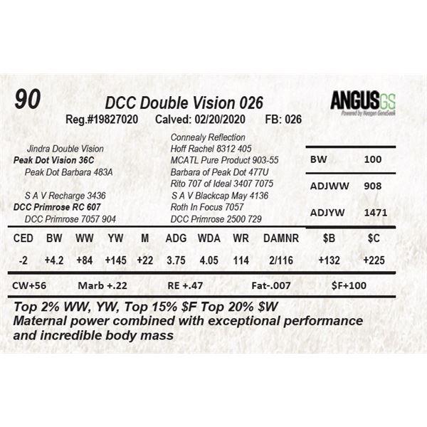 DCC Double Vision 026