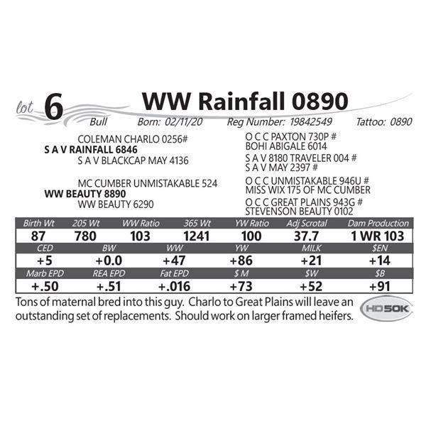 WW Rainfall 0890
