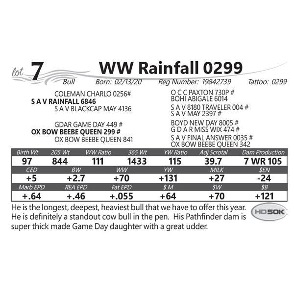WW Rainfall 0299