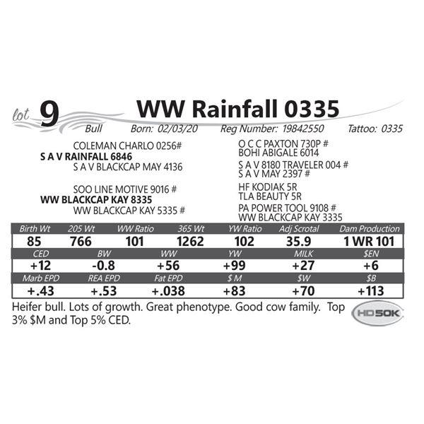 WW Rainfall 0335