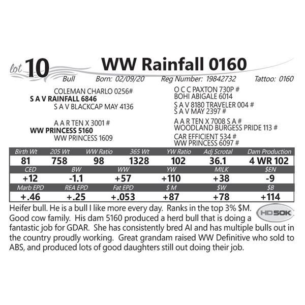 WW Rainfall 0160