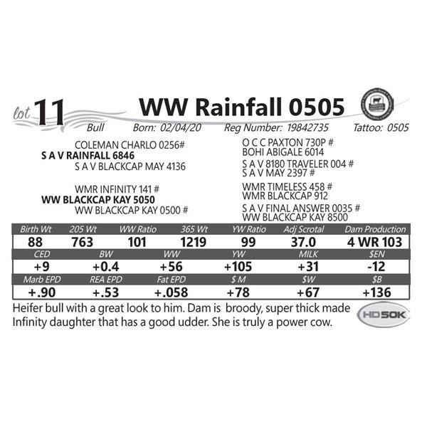 WW Rainfall 0505