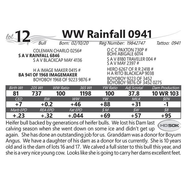WW Rainfall 0941