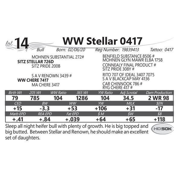 WW Stellar 0417