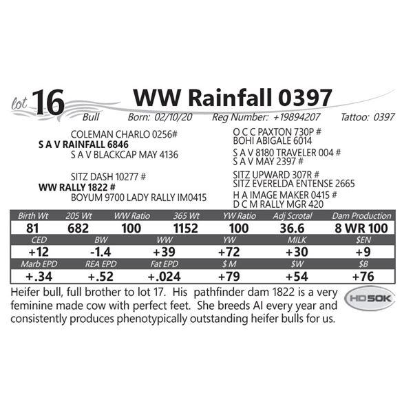 WW Rainfall 0397
