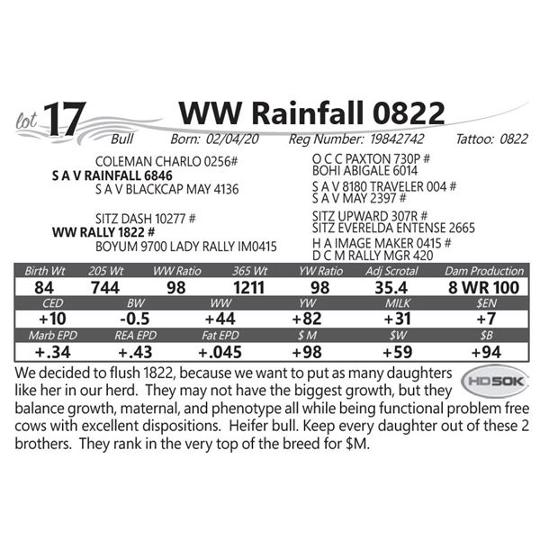 WW Rainfall 0822