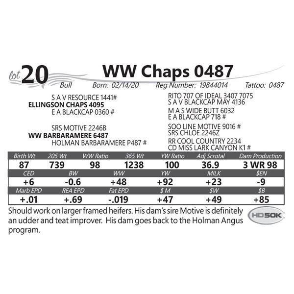 WW Chaps 0487