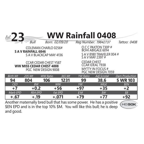 WW Rainfall 0408