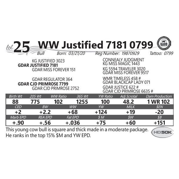 WW Justified 7181 0799