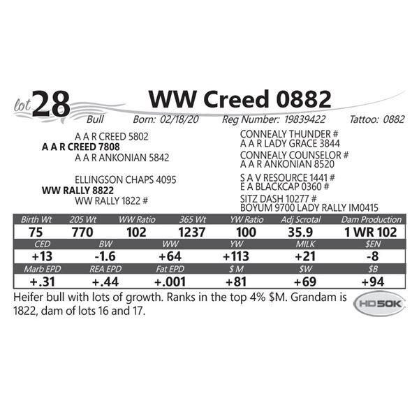 WW Creed 0882