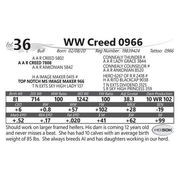 WW Creed 0966
