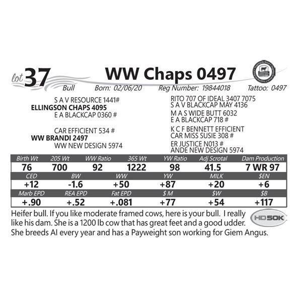 WW Chaps 0497