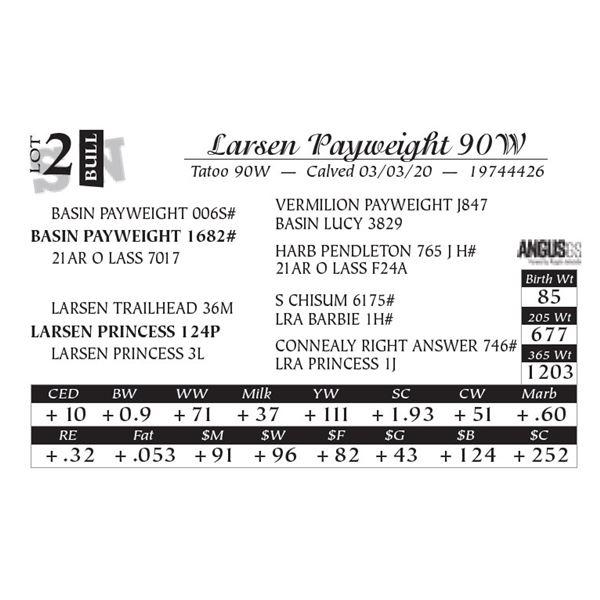 Larsen Payweight 90W