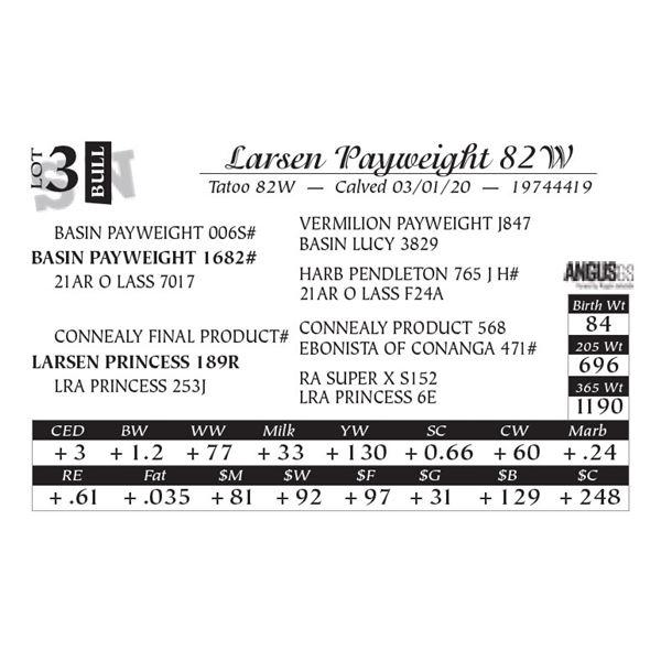 Larsen Payweight 82W