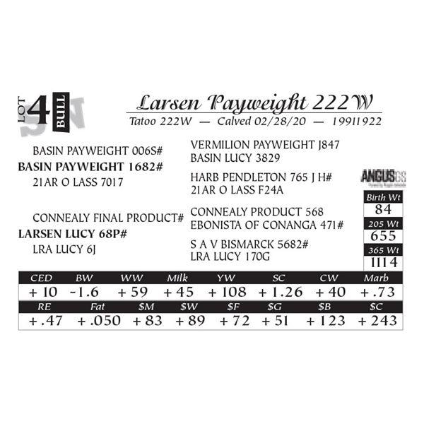 Larsen Payweight 222W