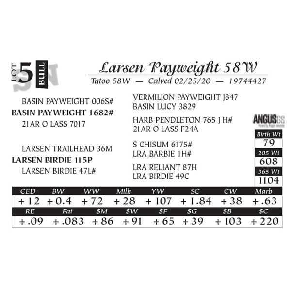 Larsen Payweight 58W