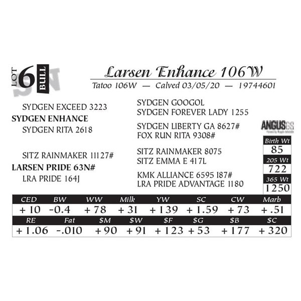 Larsen Enhance 106W