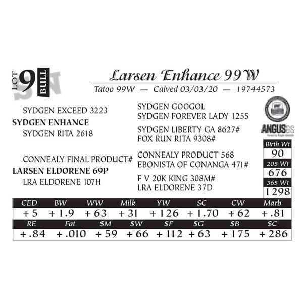 Larsen Enhance 99W