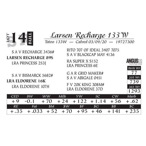 Larsen Recharge 133W