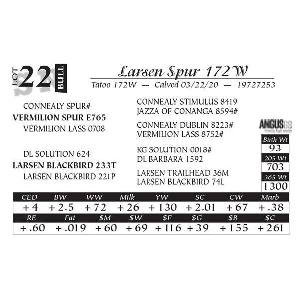 Larsen Spur 172W