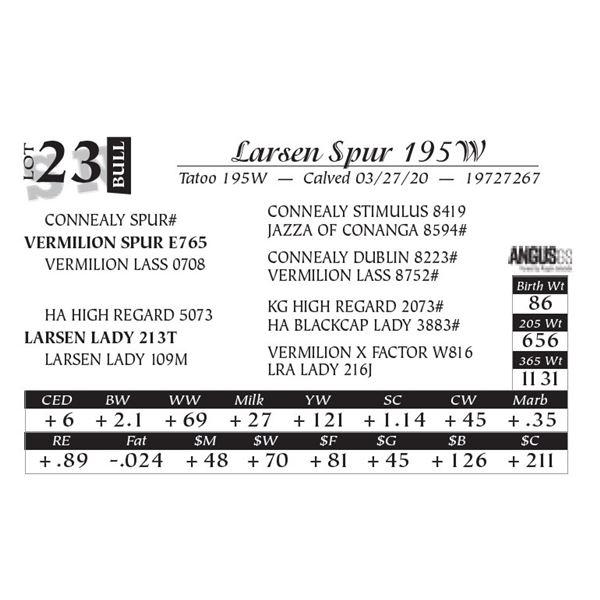 Larsen Spur 195W