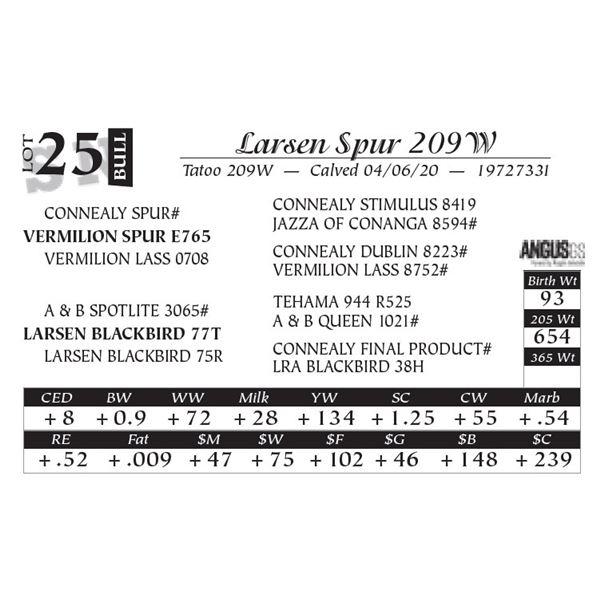 Larsen Spur 209W