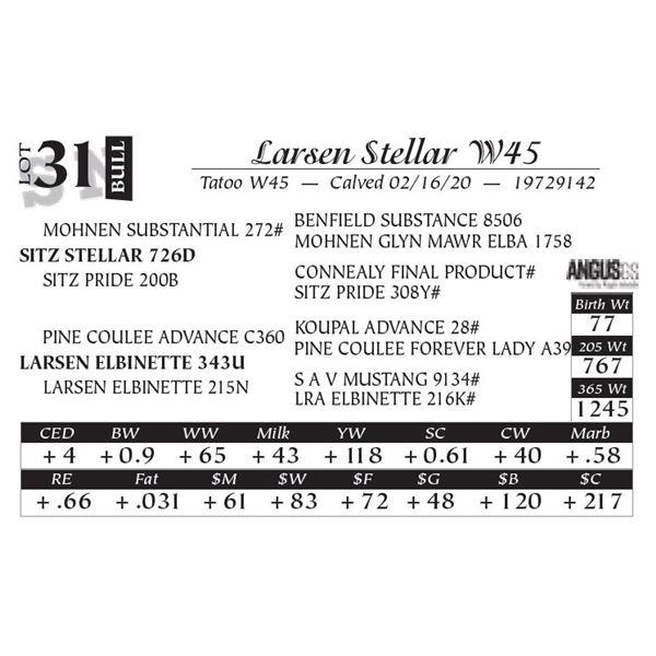 Larsen Stellar W45
