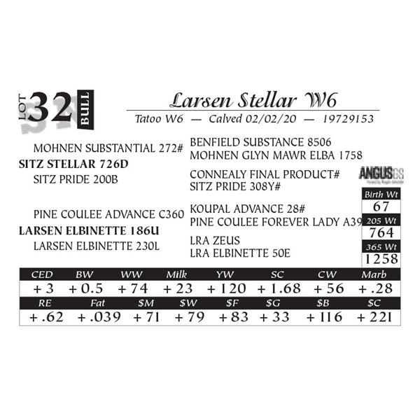 Larsen Stellar W6