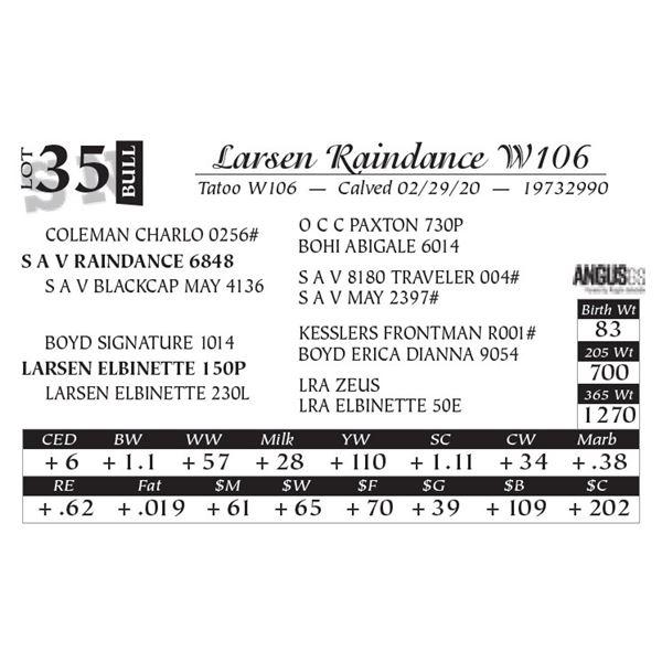 Larsen Raindance W106