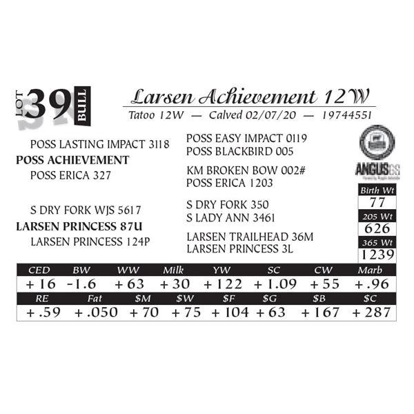 Larsen Achievement 12W