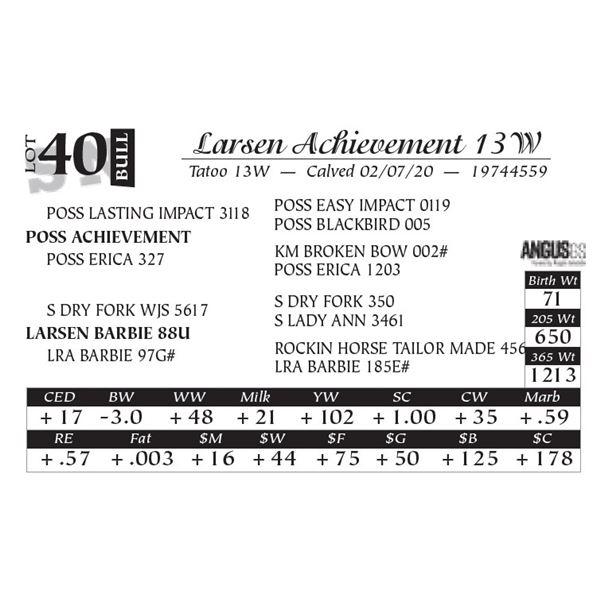 Larsen Achievement 13W