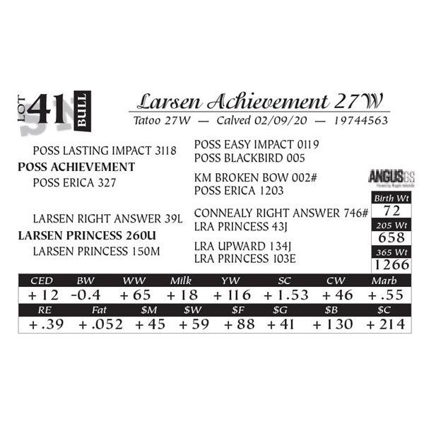 Larsen Achievement 27W