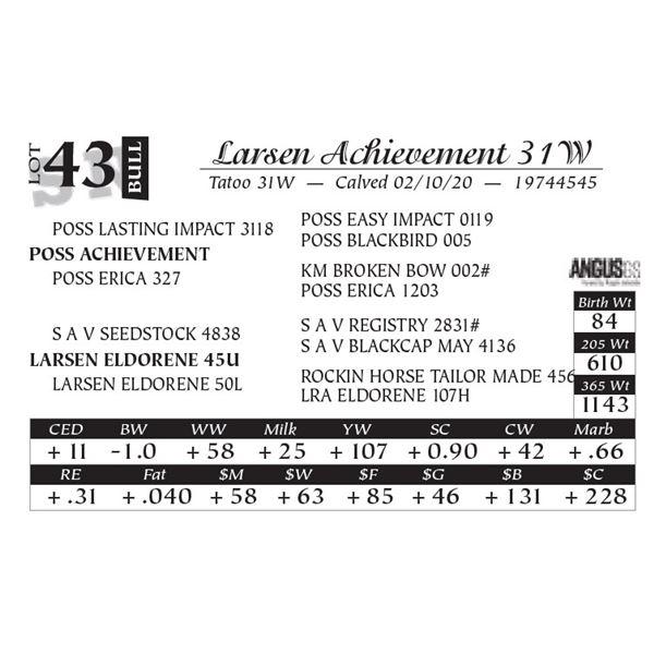 Larsen Achievement 31W