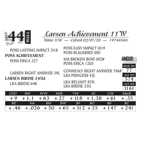 Larsen Achievement 11W