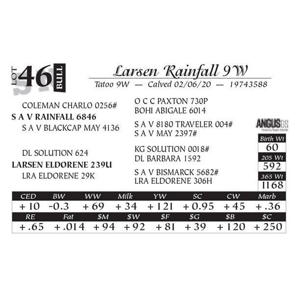 Larsen Rainfall 9W