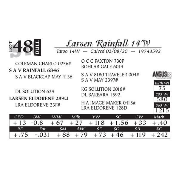 Larsen Rainfall 14W