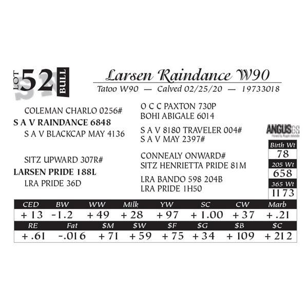 Larsen Raindance W90