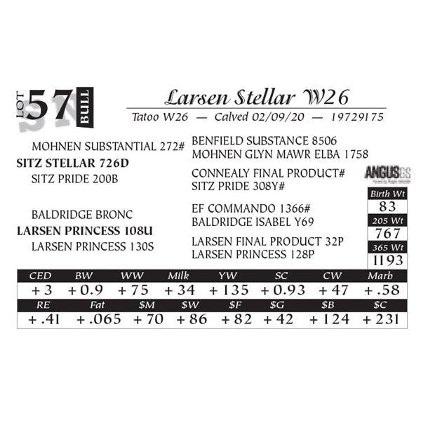 Larsen Stellar W26