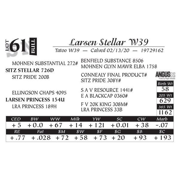 Larsen Stellar W39