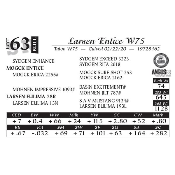 Larsen Entice W75