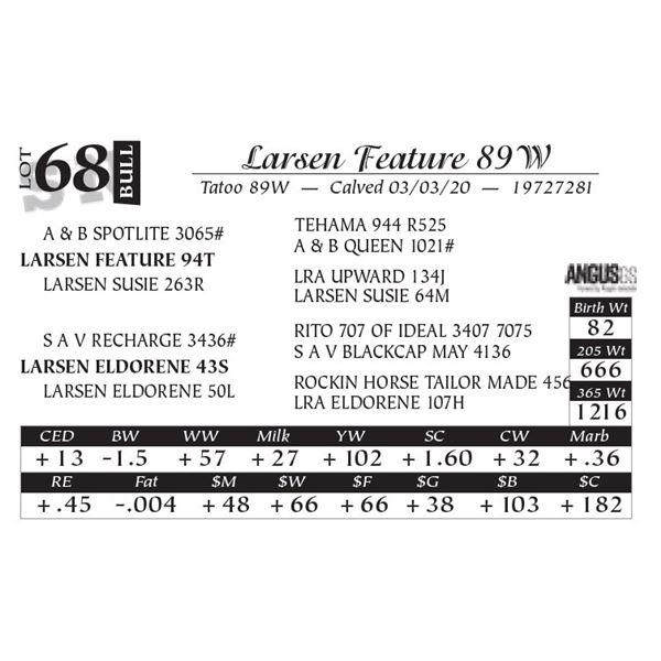 Larsen Feature 89W