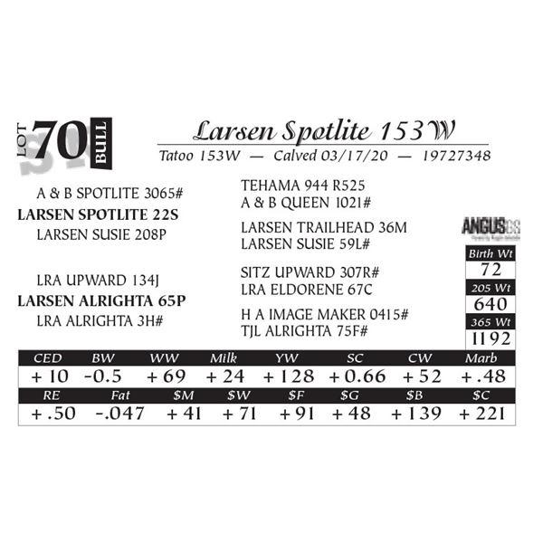 Larsen Spotlite 153W