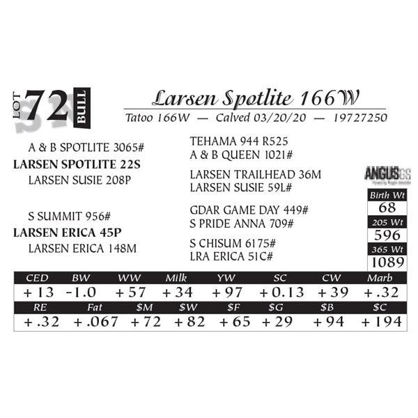 Larsen Spotlite 166W