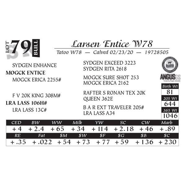 Larsen Entice W78